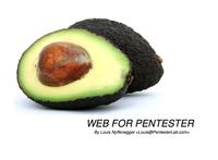 web 4 pentester